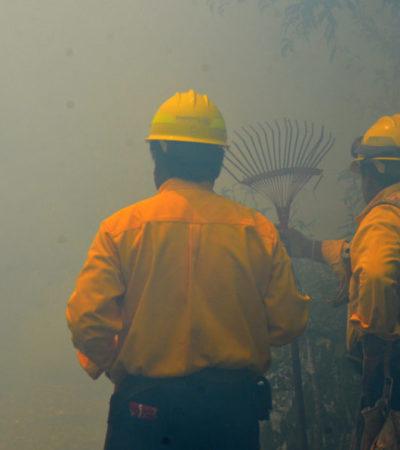 Se reduce el total de incendios forestales en Quintana Roo; este año sólo hubo 35