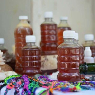 Desciende el precio de la miel en la zona maya de Quintana Roo