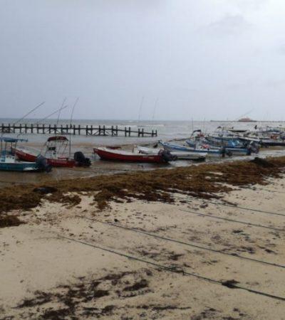 Pérdidas económicas por cierre de puerto en Solidaridad; en la ciudad no se registró contingencia por lluvias