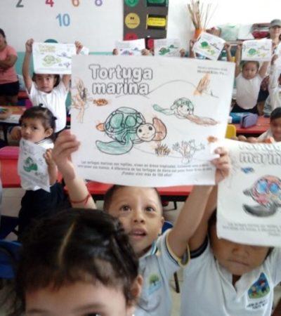 Inicia en Puerto Morelos Programa de Protección de Tortugas Marinas