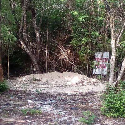 En el Día Mundial del Medio Ambiente, avanzan obras ilegales en predio de Greg Sánchez en Cozumel, denuncia Citymar