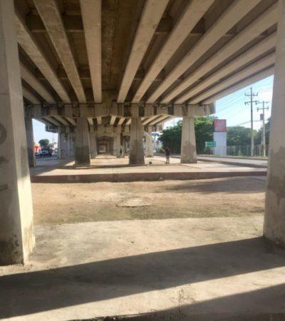 Inician trabajos de rescate del bajo puente de Playa del Carmen; empresas invertirán 3 mdp en recuperarlo para uso público