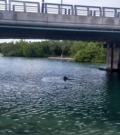 Muere hombre al tirarse un clavado en laguna junto a Punta Nizuc y ser golpeado por una embarcación