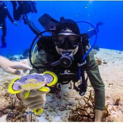 Buzo de Playa del Carmen dañó arrecifes y ecosistema marino; la empresa en la que trabajaba ya lo despidió