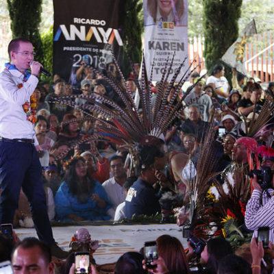 SE MOFA ANAYA: 'Meade resultó un candidato de acero… pero de a cero votos'