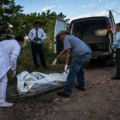 VIOLENCIA EN JALISCO: 3 ejecutados, 2 embolsados y 1 calcinado en unas cuantas horas