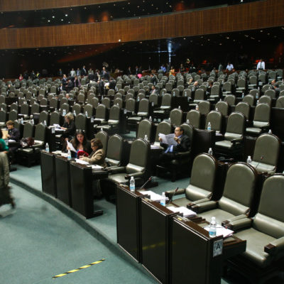 Promoverá Panal ley 'Nalgas a la Silla' para evitar diputados y senadores faltistas