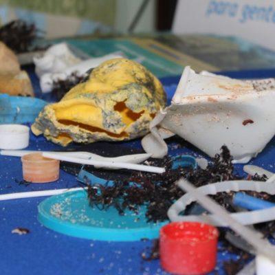 """La iniciativa """"Arrecifes Saludables para Gente Saludable"""", pide no usar plásticos de un solo uso en Playa del Carmen"""