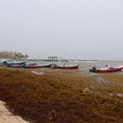 Más de 2 mil embarcaciones se mantienen inactivas en el cuarto día consecutivo de cierre de puerto, en Playa del Carmen