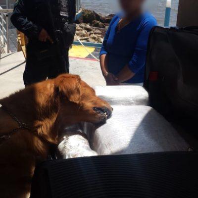 Aseguran a una mujer con 43 kilos de marihuana en la terminal marítima de Playa del Carmen