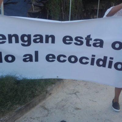 Ecocidio en Playa del Carmen ocurrió sin que autoridades intervinieran; en menos de 12 días se devastó una hectárea de manglar