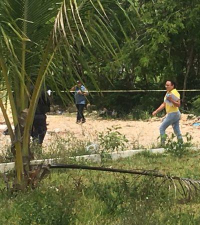 HALLAN A MUJER MUERTA A UN COSTADO DEL ARCO VIAL: Encuentran cuerpo en un área verde de la SM 252 de Cancún