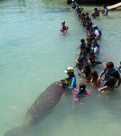Pequeños scouts de todo el país visitan Isla Mujeres para aprender de la lucha contra el plástico a nivel mundial