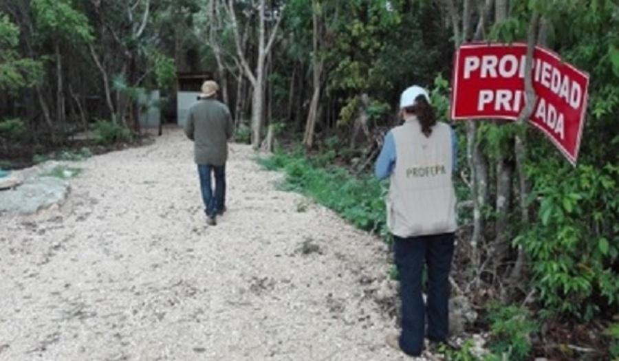 Un mes después frenan ecocidio en Puerto Morelos