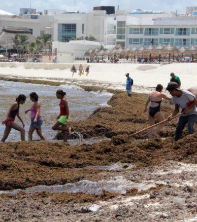 Turistas cancelan reservaciones en el Caribe mexicano por recale masivo de sargazo