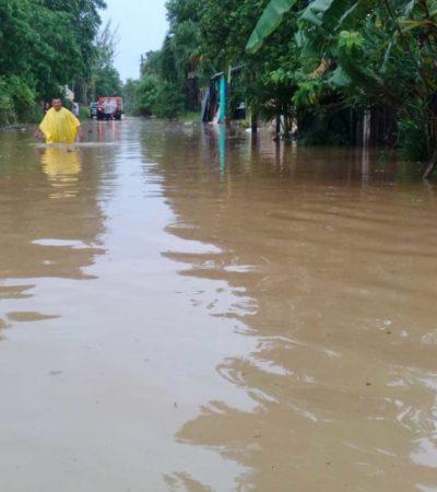 Más de 2 mil productores del campo registraron afectaciones en sus cultivos por inundaciones