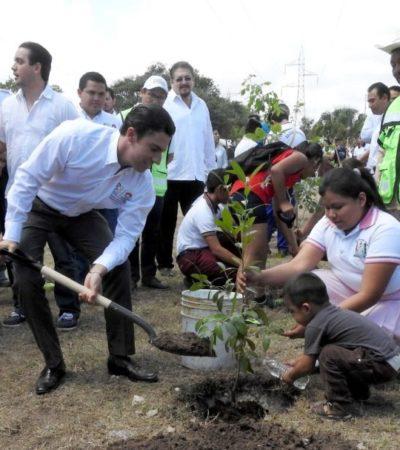 Gobierno de BJ continúa participando en acciones a favor del medio ambiente; al momento, se han plantado 23 mil árboles en el municipio