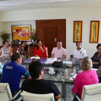 Científicos y autoridades se reúnen para buscar soluciones al problema ambiental del sargazo en costas de QR