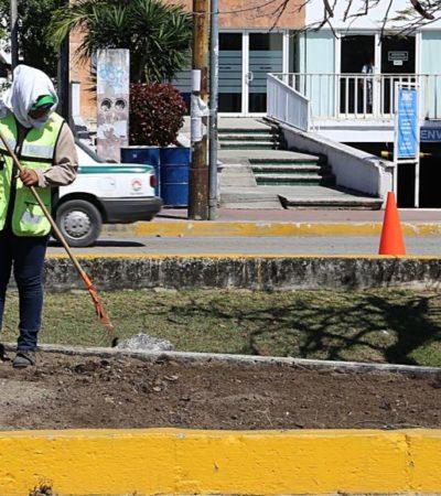 La prioridad de las jornadas de limpieza integral es mantener la imagen urbana en Cancún
