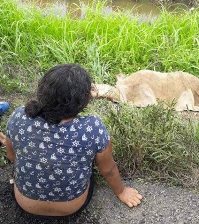 Pierde la vida mujer de 59 años en accidente vial sobre la autopista Tinajas-Cosamaloapan