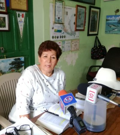 Piden frenar extracción de coatíes de Cozumel