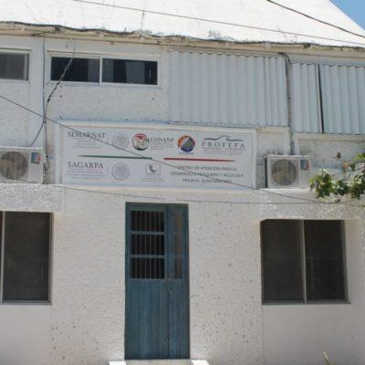 Oficinas de la Conanp en Holbox se mantienen sin uso, a dos años del cierre de la dependencia en el sitio