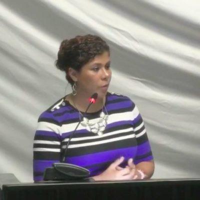 """""""No se pretende criminalizar a los padres con las nuevas reformas a la Ley de los Derechos de las Niñas, Niños y Adolescentes, sino asegurar su protección"""", afirma la diputada Leslie Hendricks"""