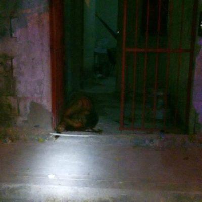 OTRO EJECUTADO EN CANCÚN: Matan a un hombre en la Región 94