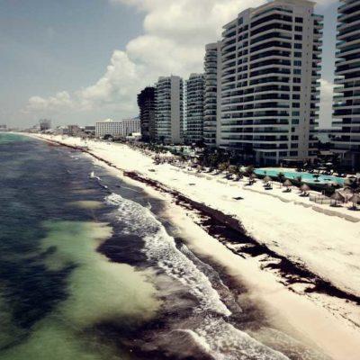 LA INVASIÓN DE LAS ALGAS: Buscan alternativas para enfrentar la crisis del sargazo sin llevarse la arena de las playas en la zona norte de Quintana Roo
