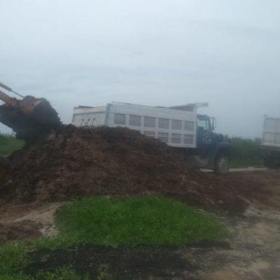 Con maquinaria pesada, realizan limpieza de playas en Tulum ante arribo masivo de sargazo