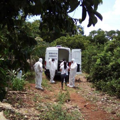 Se quita la vida colgándose de un árbol en Oxkutzcab; alarma cifra de suicidios en Yucatán