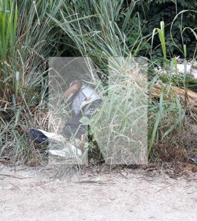 APARECE HOMBRE EJECUTADO EN CUNA MAYA: Matan a balazos a una persona en otra colonia irregular de Cancún