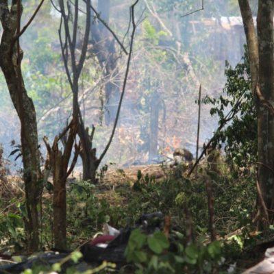 Ciudadanos se quejan por pasividad de autoridades ambientales en Playa del Carmen ante constantes quemas de basura y contaminación
