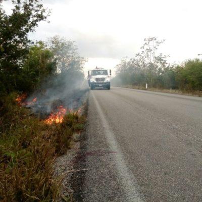 Los incendios forestales no hicieron mella en Puerto Morelos