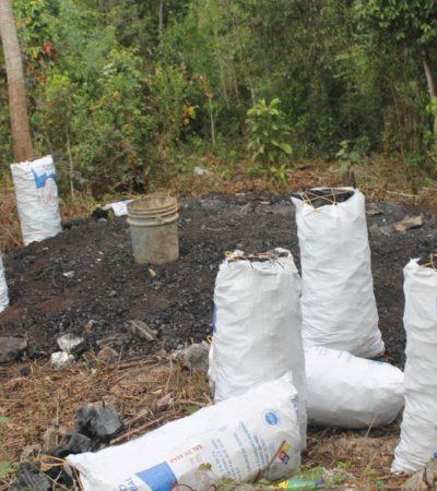 Productores de carbón revelan que son hostigados por la autoridad