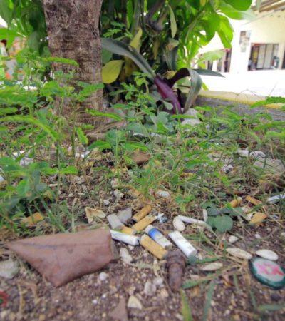 Crean el 'Colillatón' para transformar las colillas de cigarro en macetas biodegradables