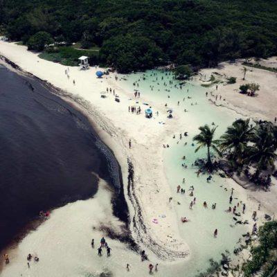 Por contingencia de sargazo en Playa del Carmen, Semarnat y autoridades municipales buscan proyectos para evitar el recale en playas