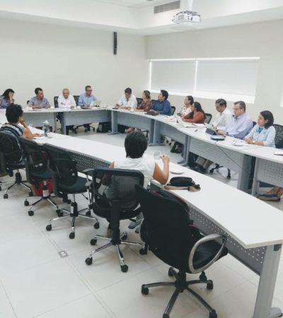 Crean Comité Estatal Científico Técnico para atender arribo de sargazo a costas de Quintana Roo