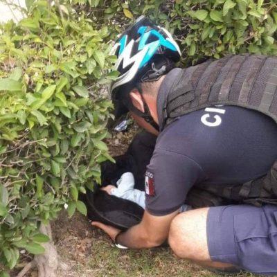 Asesinan a madre de 16 años en Zacatecas y abandonan a su bebé de 3 meses en una jardinera de Aguascalientes