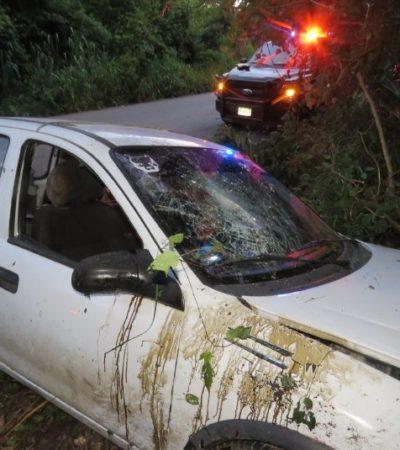 Choca conductora contra un árbol por esquivar a un can que se atravesó en carretera de Yucatán