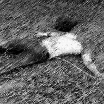 Hallan cadáver decapitado en Veracruz; tratan de averiguar identidad a través de tatuajes
