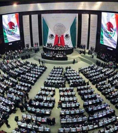HABRÁ 'DE TODO': La nueva legislatura federal estará integrada por un 46% de diputados sin título profesional; también estarán los cuestionados o polémicos