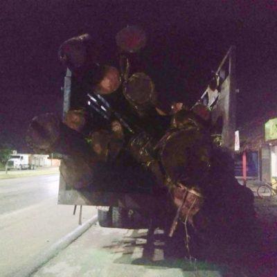 Interceptan camión con madera sin autorización en el tramo Reforma Agraria-Tulum