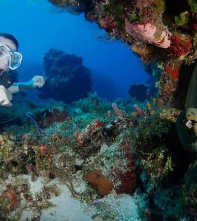 Afirman que es mala decisión pretender cerrar el Arrecife Paraíso al buceo