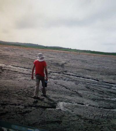 ANALIZAN ESPECIALISTAS SOCAVÓN EN SISTEMA LAGUNAR: Advierten impacto en la fauna de la región por la desaparición de buena parte del agua de la laguna Chacanbakán