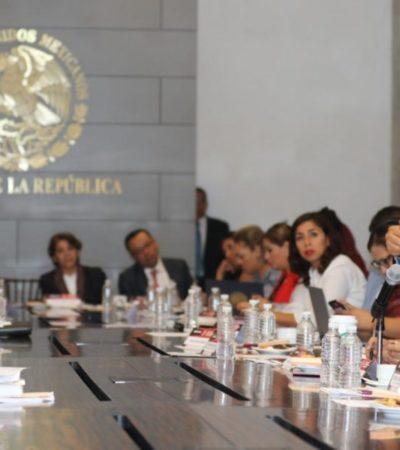 Eligen Senadores electos de Morena a Martí Batres como aspirante a presidente de la Cámara Alta