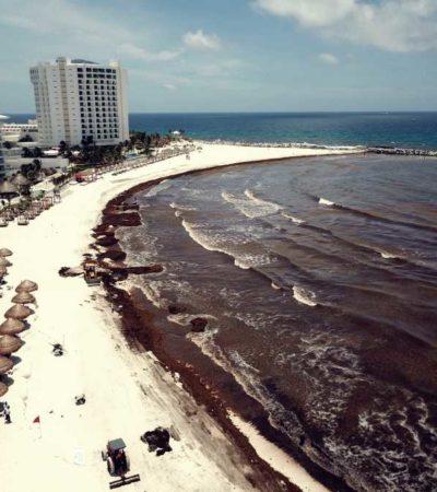 INICIA CONTENCIÓN DE SARGAZO DESDE EL MAR: Invierten más de 200 mdp en estrategia para frenar el recale masivo de algas en playas de Quintana Roo