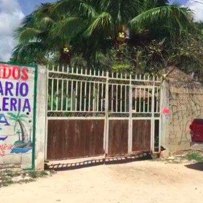 Ingresa en balneario cerrado y muere ahogado en una alberca en Cancún