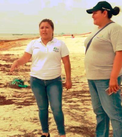 Buscan estrategias para enfrentar la crisis del sargazo en Tulum