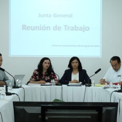 Ieqroo e INE inician acciones de coordinación y organización para la elección de diputaciones locales en QR